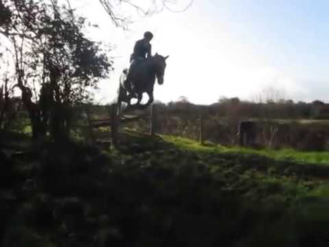 Suir Vale Harriers Hunt Loughmore Dec 7th 2014