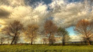 Wilhelm Kempff - Beethoven - Piano Sonata No 15 in D major, Op 28