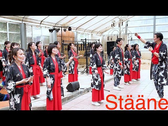 Stääne from Japan