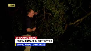LIVE: Strong Winds Tear Apart Trees In Fort Myers Community
