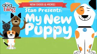 My New Puppy - Dog with a Blog Game Presents by Stan | Kids Online Games