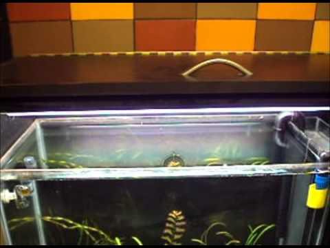 Filtro y mueble hecho en casa para acuario plantado youtube - Muebles para apartamentos ...