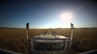 Metheny Farms Harvest 2015  -   Etowah, AR