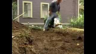 видео Как создать живую изгородь на своем участке?