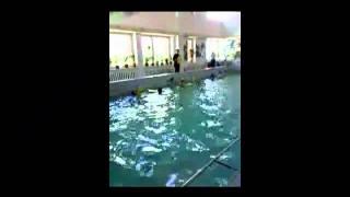 открытый урок в бассейне.mp4