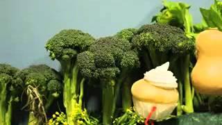 Мультфильм про здоровое питание