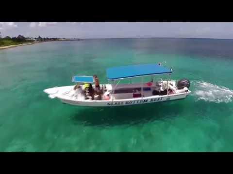 Scuba Diving in Cozumel 2014