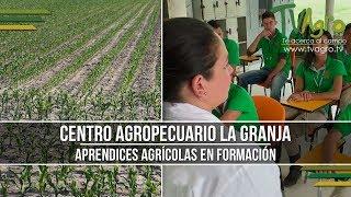 Centro Agropecuario La Granja: Aprendices Agrícolas en Formación  - TvAgro por Juan Gonzalo Angel