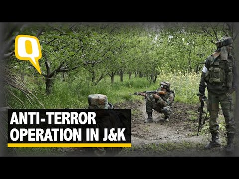 The Quint: Massive Operation Underway to Flush out Militants in Kashmir