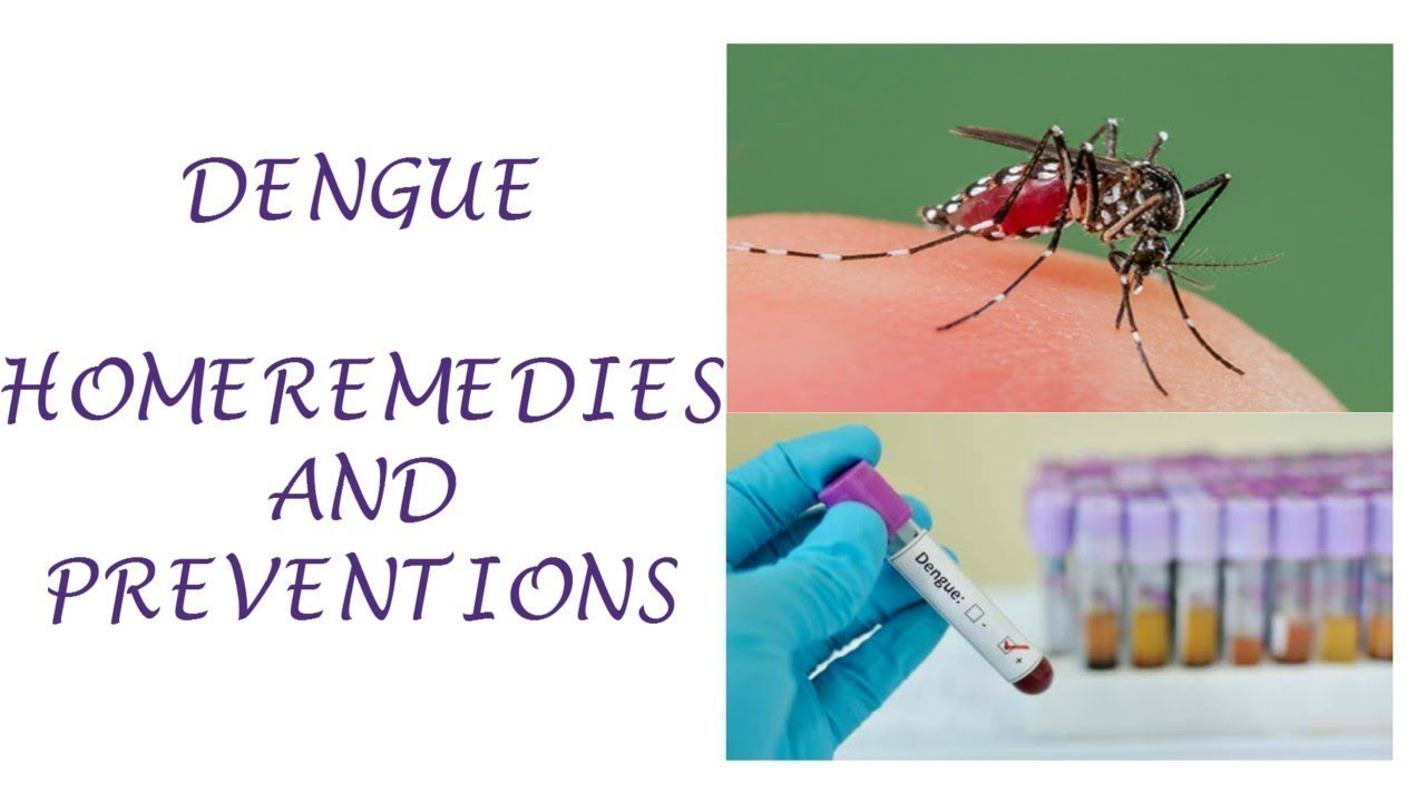 ways to prevent dengue Prevention is by far the most effective and inexpensive way to protect oneself from these pests the costs of ridding a personal residence of these insects are considerable, and efforts at control are often not immediately successful even when conducted by professionals.