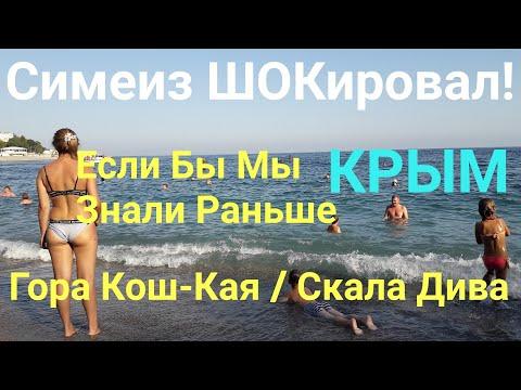 КРЫМ Симеиз Нас ШОКировал! гора Кошка скала Дива это вообще ужас Крым Реалии Crimea