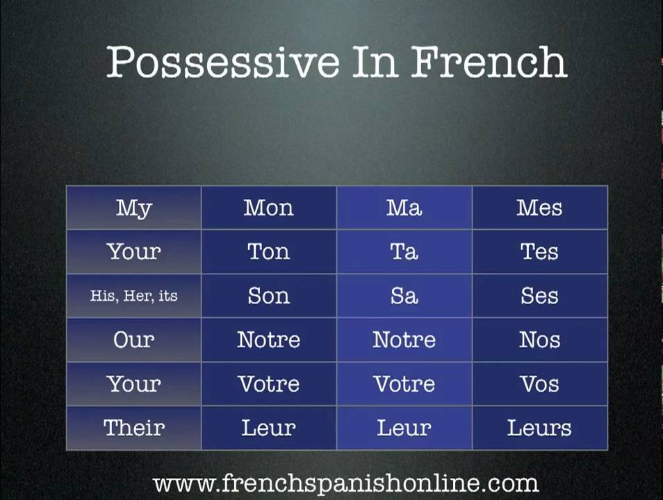 French Possessives Adjectives Come in Many, Many Forms