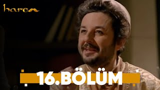 Harem - 16. Bölüm