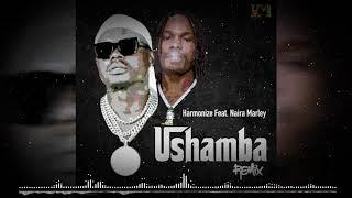 Harmonize Ft Naira Marley - Ushamba Remix (Official Audio)