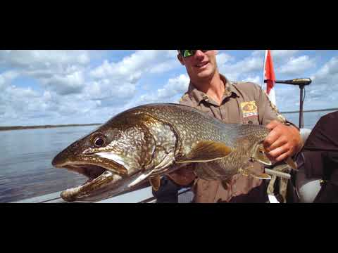 'The Aikens Experience'- Manitoba Fly-In Fishing at Aikens Lake Wilderness Lodge on YouTube