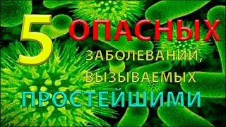 5 ОПАСНЫХ заболеваний, вызываемых простейшими!