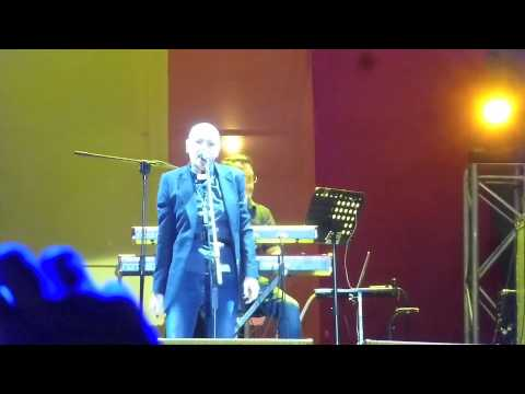 Sinead O'Connor - Take Me to Church (Live Santiago de Chile)
