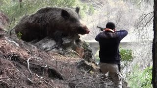 Repeat youtube video Dev Gibi Azılı Domuz Avı Wild Boar Hunting