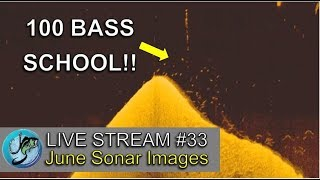 June Sonar Images Explained   Fish the Moment Live Stream #33