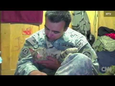 Soldier reunites with cat he had in Afghanistan