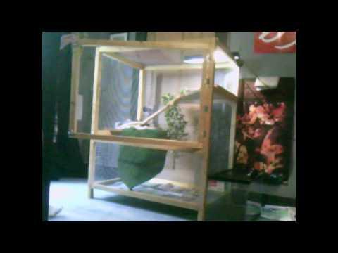 My Custom iguana cage, with my baby iguana :D