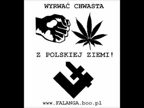 Prawe Skrzydło - Narkomańska moda