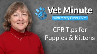 CPR Tips for Puppy and Kittens