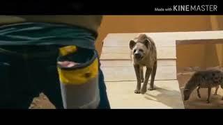 انت الغالي يا خويا مع لقطة فلم كوري     (الفلم الذي يبحث عنه الجميع كون فو يوكا )