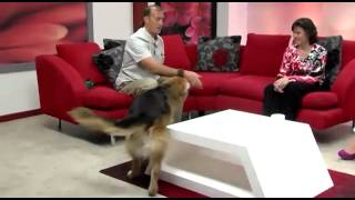 """Dima And His """"good Boys"""" On Live Tv"""
