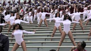 """SCSU MARCHING 101 """"UP FOR THE DOGS""""  CHAMPAGNE DANCERS"""