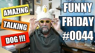 VERY FUNNY VIDEO - AMAZING TALKING DOG - FUNNY FRIDAY #0044