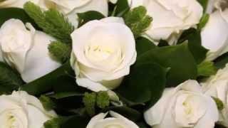 Белые розы. Язык цветов роз. Релакс ТВ5