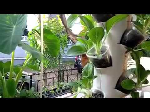 Best Aquaponics Diy Spin Grow Tower Youtube