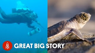 From Surfers to Scientists, the Deep Blue Defenders Saving Our Oceans