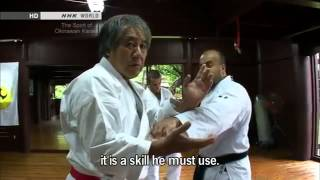 Tee - The True Spirit of Okinawan Karate