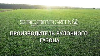 Рулонный газон Самара. Sagama Green - производитель рулонного газона в Самаре(, 2016-05-05T13:16:36.000Z)