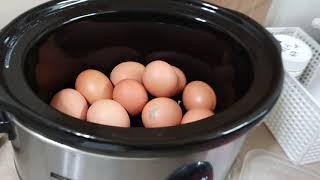 #계란굽는기계#군계란만들기#슬로우쿠커#키친아트#맥반석계…