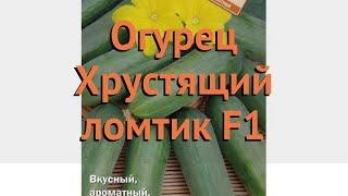 Огурец обыкновенный Хрустящий ломтик F1 🌿 обзор: как сажать, семена огурца Хрустящий ломтик F1