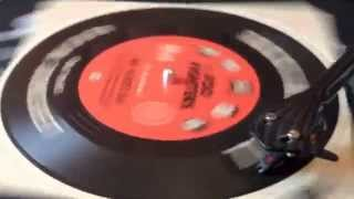 Foo Fighters - Two-Headed Dog (45 Rpm Soundsheet - no VINYL)