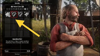 Where To Sell Animal Pelts | Red Dead Redemption 2 Video
