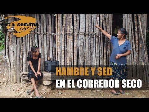 Hambre y sed en el corredor seco de Nicaragua