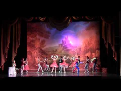 Swan Lake  A. Ploom  and A. Lomachenkova ballet theater 14.06.2017