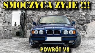 Smoczyca żyje !!! Projekt BMW E34 540i V8 Micha po renowacji.