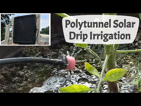 Polytunnel Solar Drip Irrigation Watering System
