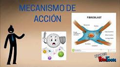 Azitromicina  Química 2016