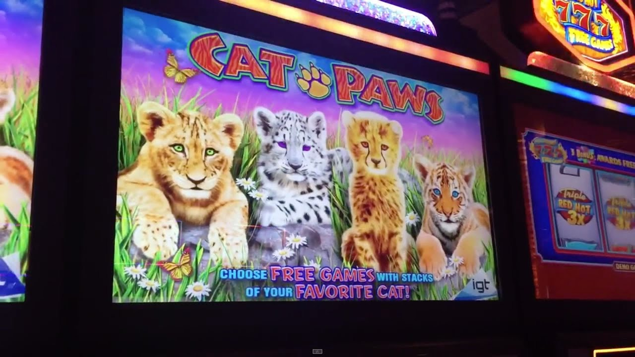 free slot machine bonus feature