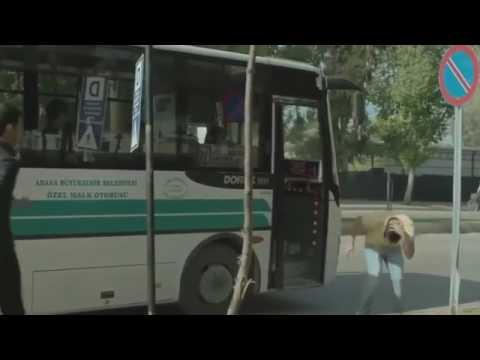 Süleyman Demirel Baraj Yolu İller Bankası (1kezban 1 mahmut)