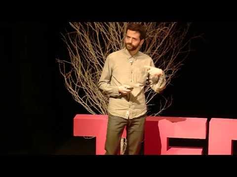 Neutron Stars: Beyond Ordinary Stellar Objects   Arnau Rios Huguet   TEDxSurreyUniversity