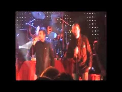 The Beautiful South Live Hull 2006 (Carry On Regardless)