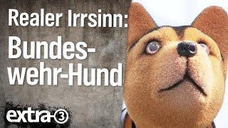 Realer Irrsinn: Tierarztrechnung für Bundeswehr-Hund | extra 3 | NDR